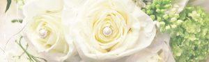 Weiße Rosen zur Hochzeit